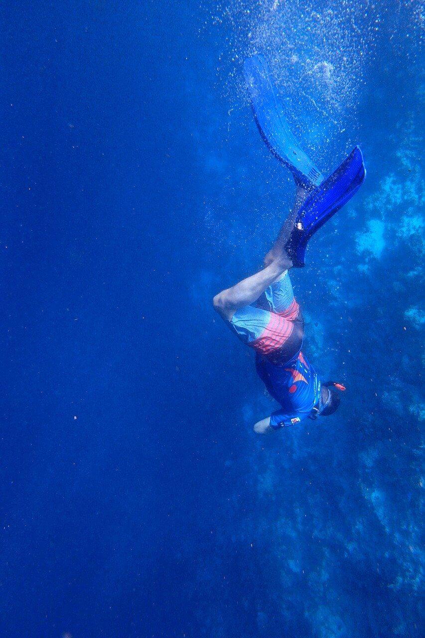 plongée écologique